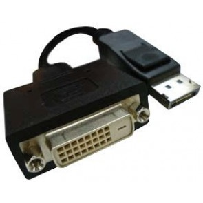 Professional Cables Display Port Male to DVI-D Female Adapter (DP-DVI)